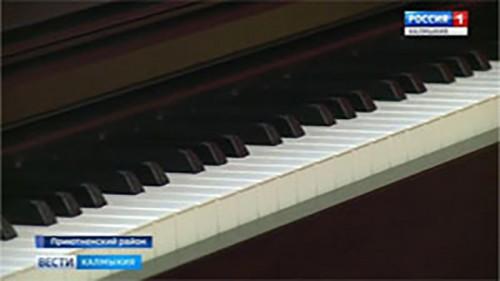 Новые музыкальные инструменты получила Приютненская школа искусств