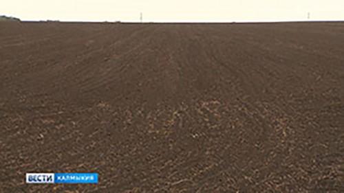 В Калмыкии продолжаются осенние полевые работы