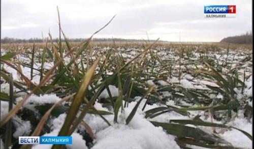 В хозяйствах республики идет подготовка к весенне-полевым работам