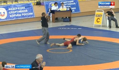 Двое калмыцких спортсменов стали чемпионами Первенства ЮФО по греко-римской борьбе
