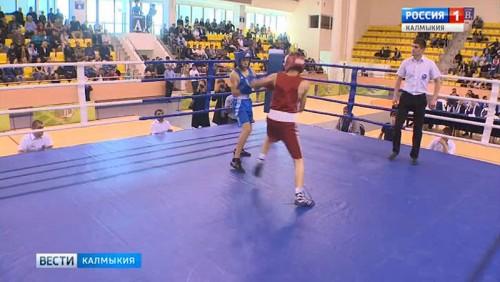 В «Ойрат-Арене» стартует Открытое первенство по боксу среди юношей