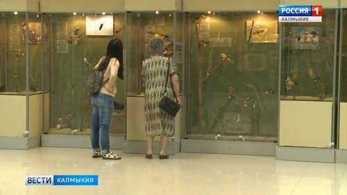 В Элисте состоится круглый стол, посвященный международному дню музеев