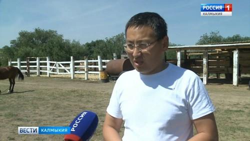 В Калмыкии пройдет конный фестиваль
