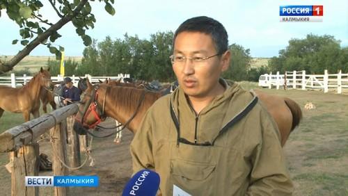 Стартовал первый этап конного фестиваля