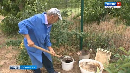 Жаркая погода требует от садоводов тщательного полива