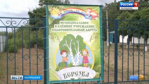 В лагере «Березка» Городовиковского района прошла военно-спортивная игра