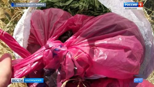 Двое жителей Лаганского района задержаны с марихуаной