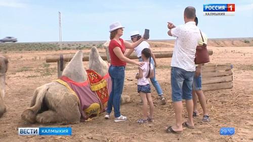 Лучшие проекты в сфере туризма получат гранты правительства Калмыкии