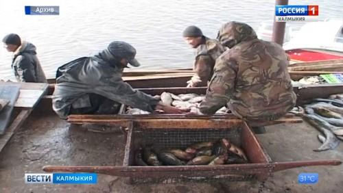 Водоем «Шагардык» закрыт на карантин