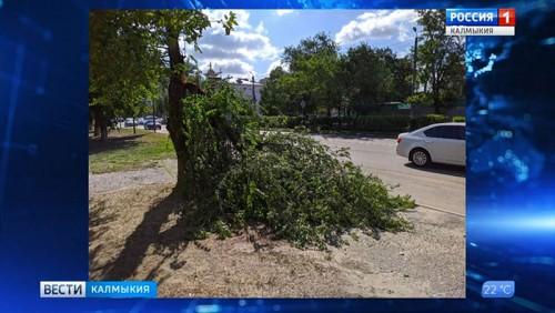 В Калмыкии сильный ветер вызвал повреждения