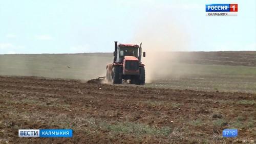 Калмыцкие аграрии делятся опытом
