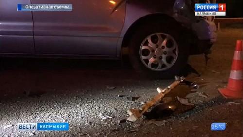 Более 20 человек пострадали в ДТП на дорогах республики