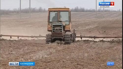В районах приступили к полевым работам