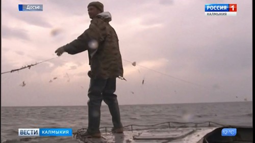 Житель Лагани подозревается в браконьерстве