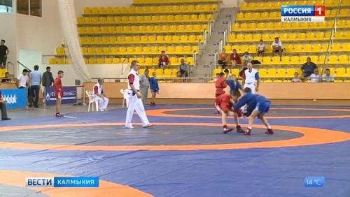 Калмыцкие спортсменки завоевали путевку на первенство страны