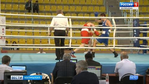 В Калмыкии проходит турнир по боксу