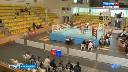 Начались полуфинальные поединки Всероссийского турнира по боксу