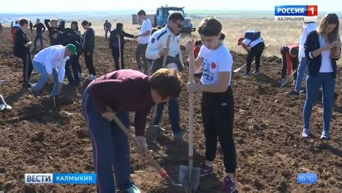 В Калмыкии прошла экологическая акция