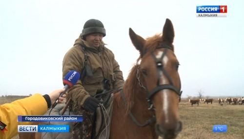 В Калмыкии количество семейных ферм увеличивается
