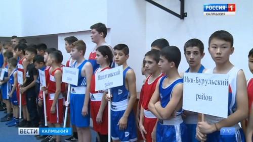 Стартовал Чемпионат республики по боксу