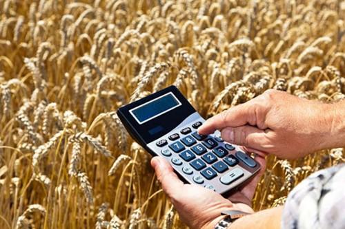 Финансовая поддержка производителям сельскохозяйственной продукции