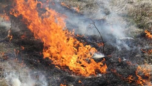 МЧС предупреждает жителей Калмыкии