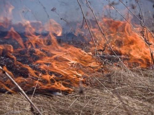В Калмыкии начался пожароопасный сезон