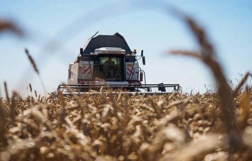 Аграрии Калмыкии  могут рассчитывать на поддержку по ряду программ