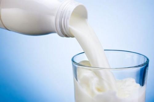 В одном из соцучреждений Элисты была выявлена фальсифицированная молочная продукция