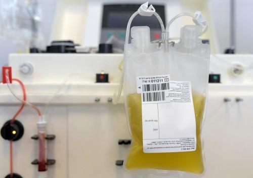 Иммунная плазма от доноров уже введена двум жителям Калмыкии