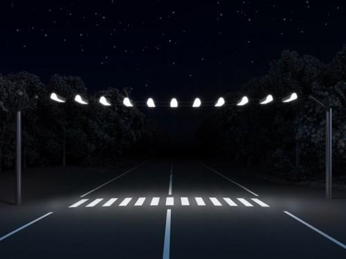 На федеральной трассе вблизи Яшкуля установлено дополнительное освещение
