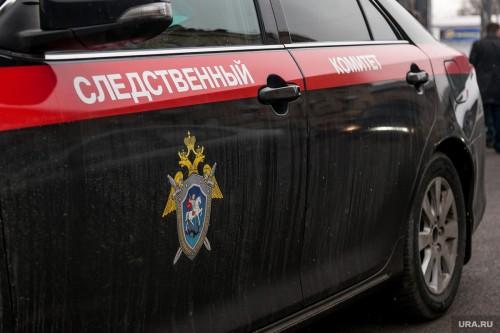 Александр Бастрыкин поставил на контроль ход расследования уголовного дела об убийстве в Калмыкии троих детей