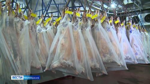 С 1 июля повышены требования к условиям перемещения скота и мясной продукции