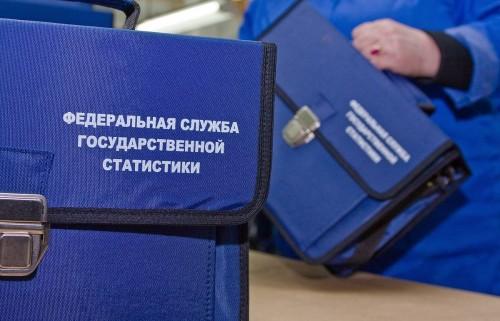 Всероссийская перепись населения пройдет в следующем году