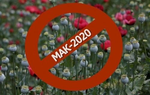 Операция «МАК-2020» в деле