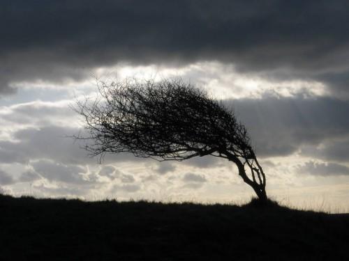 В Калмыкии ожидаются сильные осадки и усиление ветра