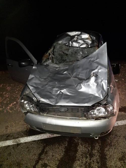 На территории Кетченеровского района произошло ДТП со смертельным исходом