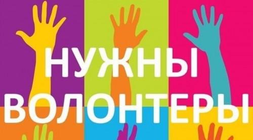 Стартует регистрация волонтёров для участия в общероссийском проекте