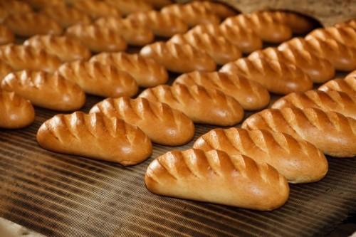 Калмыцкие хлебопёки получили первые выплаты