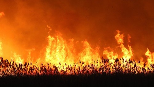 В Калмыкии прогнозируется чрезвычайная пожароопасность