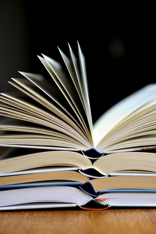 Объявлен конкурс на молодежную литературную премию