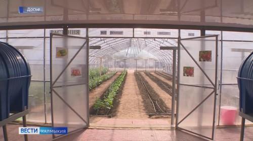 Определен земельный участок под строительство агропромышленного парка