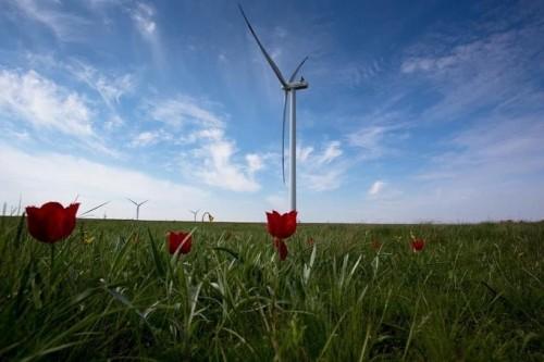 Калмыкию признали  самым «зелёным» регионом  страны