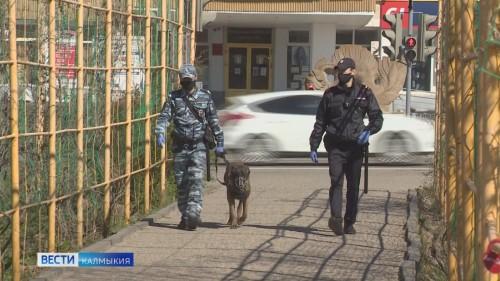 Сегодня сотрудники патрульно-постовой службы МВД отмечают профессиональный праздник