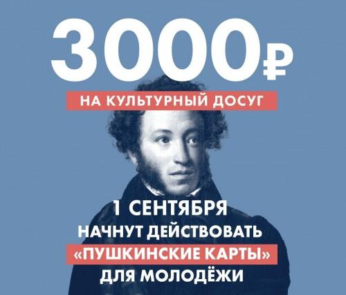 С сегодняшнего дня в стране начнёт действовать «Пушкинская карта»