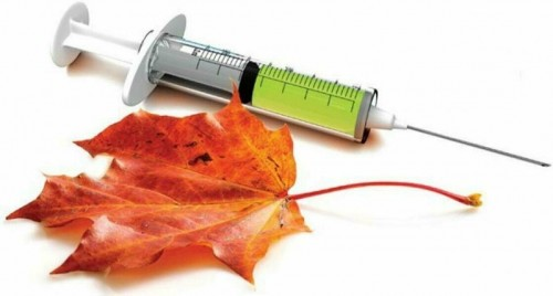В Калмыкии начинается прививочная кампания от гриппа