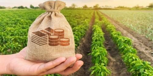 Прокуратура республики возбудила дело об административном правонарушении  в отношении министра сельского хозяйства Калмыкии