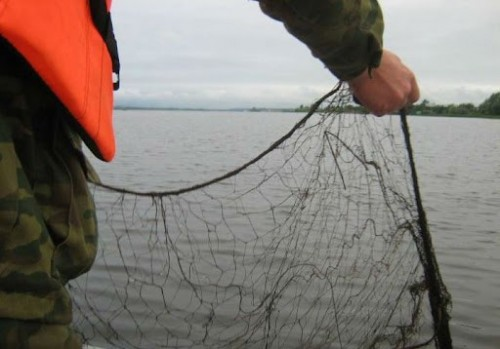 Пограничники Калмыкии пресекли несколько фактов незаконной добычи рыбы с начала недели