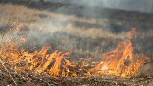 В двух районах Калмыкии объявлено экстренное предупреждение