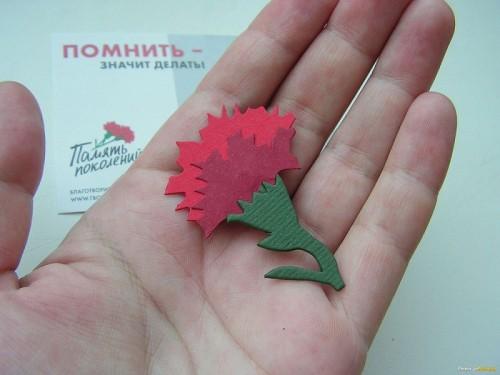 В Калмыкии продолжается Всероссийская акция «Красная гвоздика»